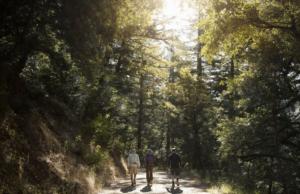 4day hike series