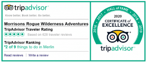 2020 Certificate of Excellence from Trip Advisor