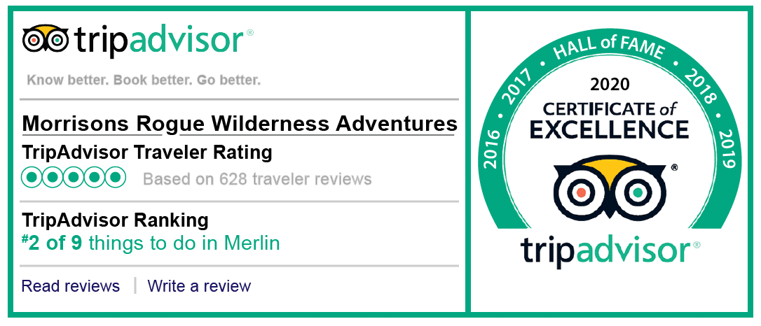TripAdvisor Reviews. Score of 5 out of 5. 2020 Certificate of Excellence.