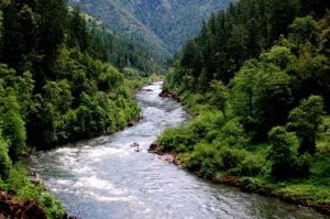 A green, sunny day on the Rogue River